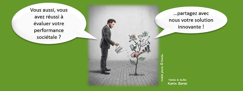 Audit, efficacité sociétale en développement durable ou RSE, entreprise exemple