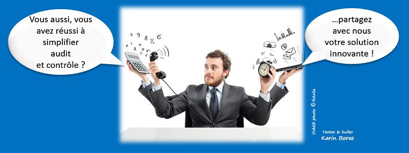 Audit et controle, simplifier en développement durable ou RSE, entreprise exemple