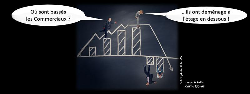 Commercial, les commerciaux évolution en développement durable ou RSE, titre