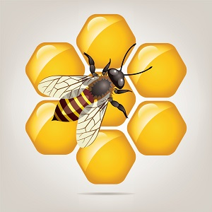 biodiversité comprendre les enjeux du défi de la qualité du vivant icone vector working bee on honeycells