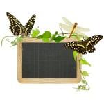 Entreprendre, communication corporate en développement durable ou RSE, icone