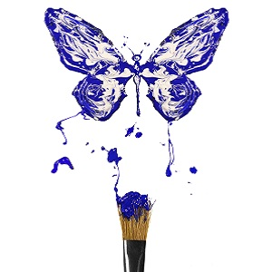 communiquer : icone papillon