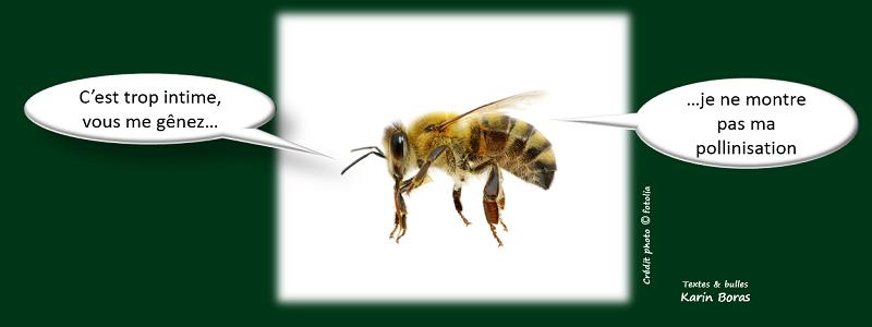 biodiversité solution 3 : accroitre la reproduction pour favoriser la biodiversité des espèces végétales et animales
