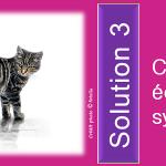 biodiversité : solution 3, recréer des éco systèmes, titre