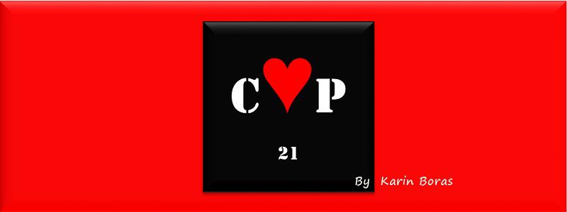 COP 21 by karin boras