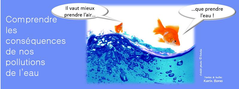 titre eau comprendre les conséquences de nos pollutions de l'eau