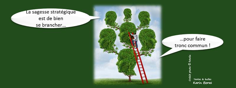 La sagesse stratégique est de bien se brancher...pour faire tronc commun !