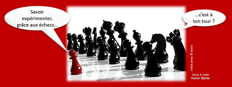Savoir expérimenter grâce aux échecs, c'est à ton tour ?