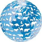 Organiser la proximité de l'organisation en développement durable ou RSE, icone